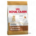 Royal Canin LABRADOR JUNIOR 12кг